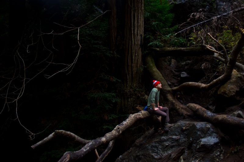 Sitting in a dark forest in front of a waterfall